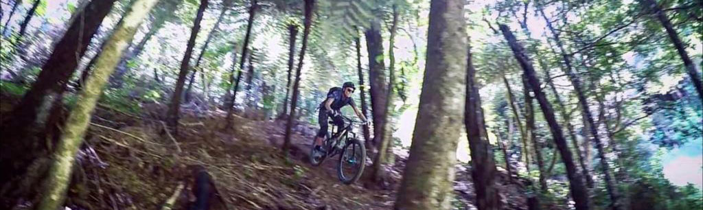 bush-biking-whangarei